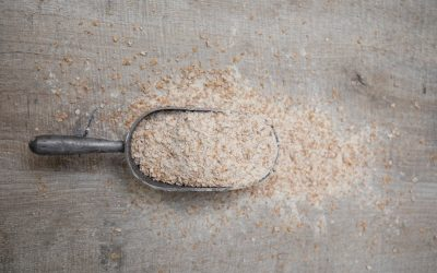 The battle of the brans – why wheat bran is best!